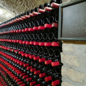 l1020505_nimrod-winery__2017
