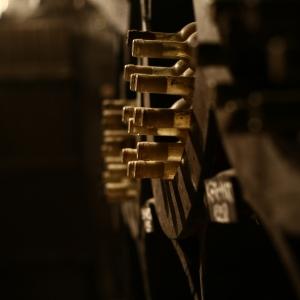 Pince részlet / Cellar Detail