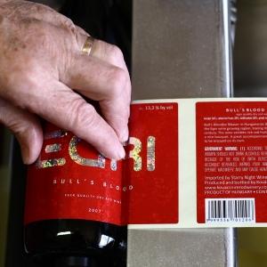 Címkézés kézzel / Manual Labeling